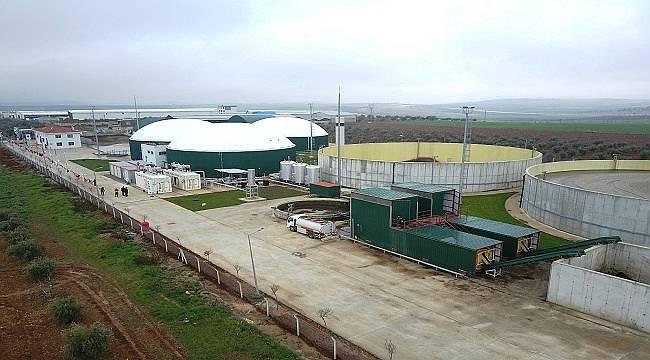 Gaziantep'te hayvansal atıklardan ısı ve elektrik üretiyor