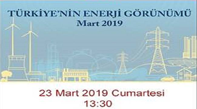 Türkiye'nin Enerji Görünümü Mart 2019