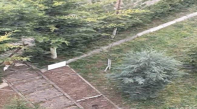 Bahar geldi: Ankara'da kar yağıyor