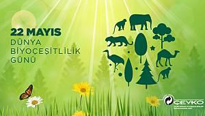 22 Mayıs Dünya Biyoçeşitlilik Günü