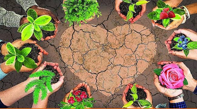 17 HAZİRAN: 'Dünya Çölleşme ile Mücadele Günü'