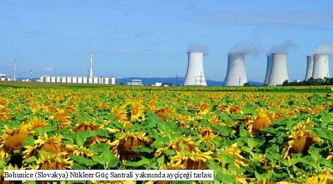 Faaliyette olan bazı nükleer santrallerden görüntüler: AYRINTILAR İÇİN TIKLAYINIZ