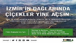 İzmir için fidan bağışı kampanyası başlattı: TEMA VAKFI