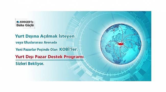 ENERJİ DÜNYASI: 'Yurt Dışı Pazar Destek Programı' başladı