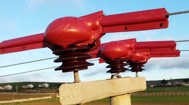 Kuşlar elektrik akımına kapılmasın diye 3.500 direğe izolasyon uyguladı