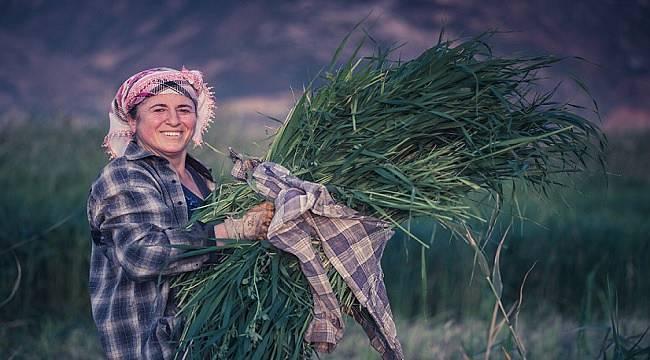 ENERJİ DÜNYASI: Bugün Dünya Çiftçi Kadınlar Günü