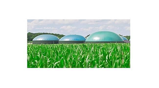 Benzin - motorine eklenen biyoetanol - biyodizel miktarları: YENİ