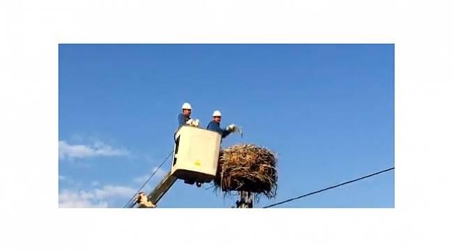 ELDER: Enerji Çalışanları Haftasını kutluyoruz