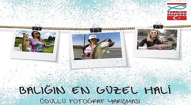 Farklı bir fotoğraf yarışması: Alabalık, levrek ve çipura (HAFTASONU HABERİ)