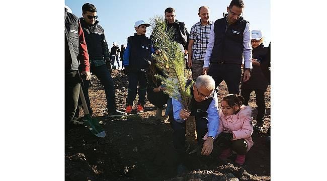 LİMAK ENERJİ: 4 şehirde 4 bin ağaçla kuracak