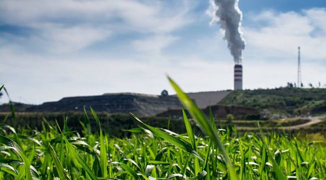 Veto to the thermal power plant law!