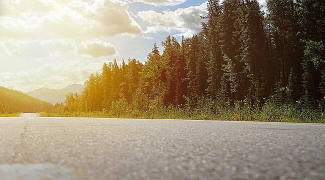 Karbon Saydamlık Projesi - CDP: Pirelli'nin İklim Değişikliği ile mücadelede...