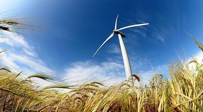 Rüzgar enerjisi dünya elektriğinin yüzde 5,44'ünü üretiyor!