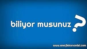 Türkiye'de elektrik üreten kaç BİYOKÜTLE santrali var?