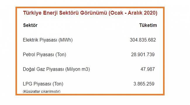 Türkiye Enerji Sektörü Görünümü - 2020