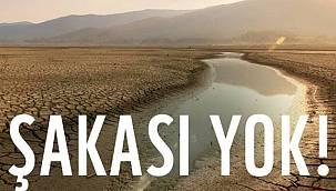 WWF Türkiye: Şakası yok!