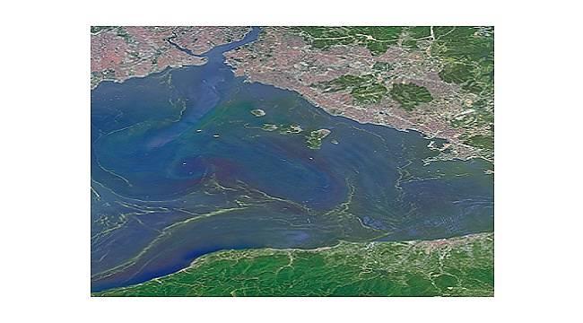 Marmara Denizi MÜSİLAJ sorunu masaya yatırılıyor!